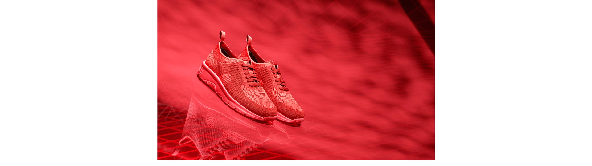 Sneaker Wave